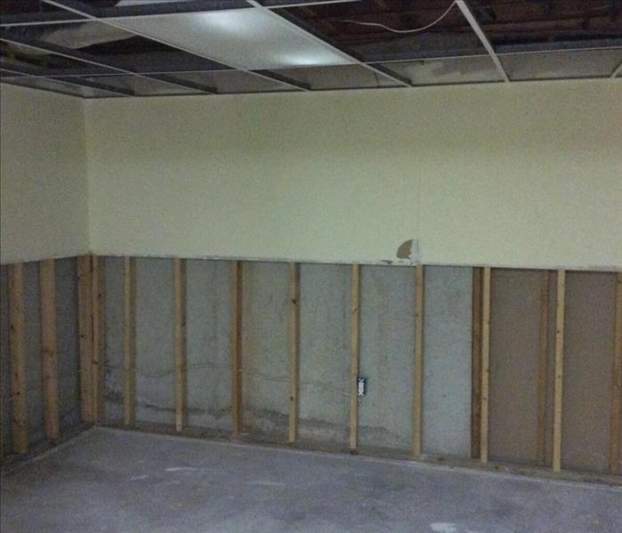 Basement Flood Causes Mold Growth After