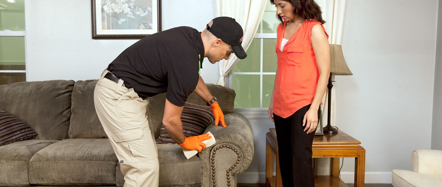 Mcdonough, GA carpet upholstery cleaning