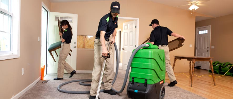 Mcdonough, GA cleaning services